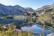 Les différentes raisons de choisir des vacances à la montagne en été